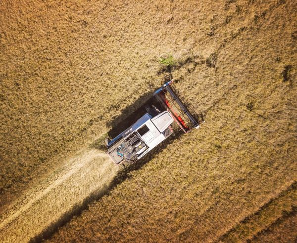 Combine Harvester working in fields from drone Agriculture High Angle View Tractor Growth Field Harvester Harvester, Combine Harvester Combine Harvester Agricultural Machinery Outdoors Aerial View Rural Scene Combine Harvester Plowed Field Nature Work August Cereal Plant