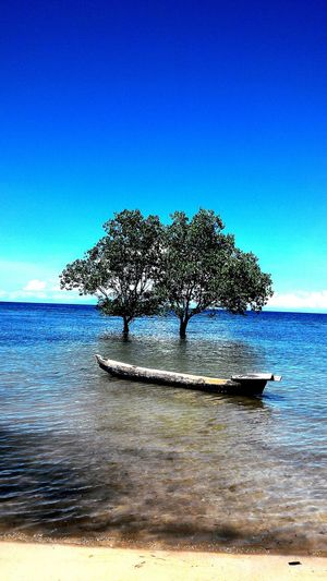 Colors Of Carnival Sumba Island The Beauty Of Nature Blue Beachlovers Bestbeach Seascape Seashore