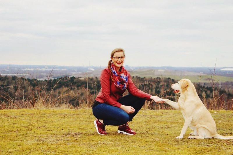 Dog Labrador Petlover Landscape Highfive Great View