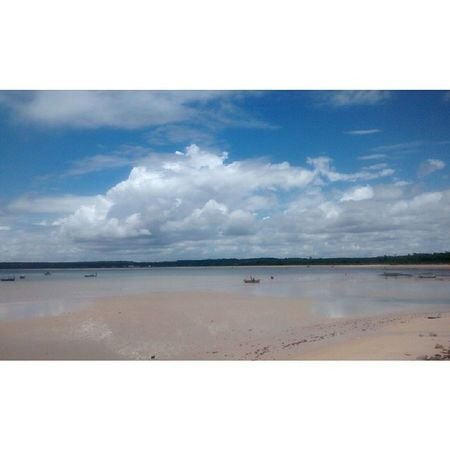🌴☀ Nofiltre Nature Beach MCZ Maceiobeach Maceió-AL Brazil Sunny Day