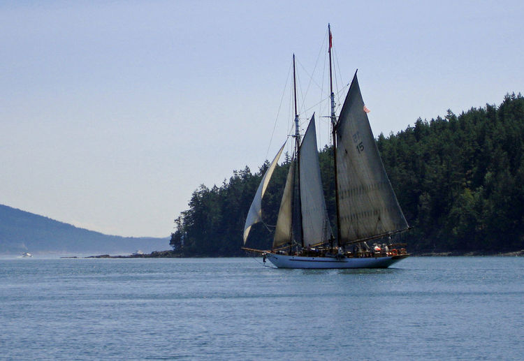 Schooner voyage Outdoor Education Charter Travel Destinations Edge Of The Sea Pacific Northwest  Breeze Calm Seas Engineless Motion Summer Travel Sailboat Inland Sea Wooden Boat Skills  Bay Of Water Islands Nautical Vessel Transportation Water Sailing Mode Of Transportation Sky Nature Pole Travel Tall Ship Clear Sky Scenics - Nature Mast Sailing Ship Outdoors