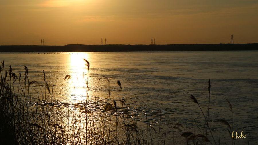 今朝のウトナイ湖 ウトナイ湖 Utonailake Sun 凍りついた湖 Landscapes With WhiteWall