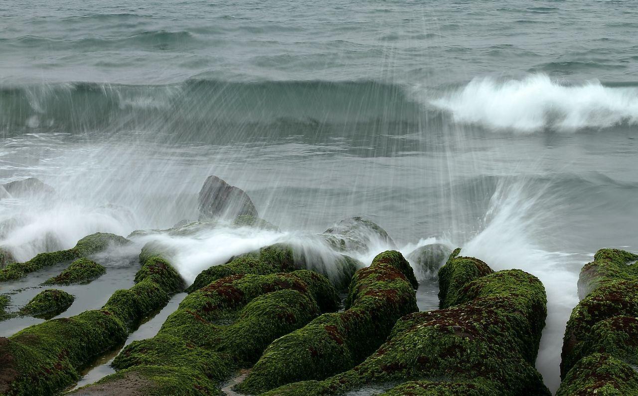 Waves Splashing On Moss Covered Rocks