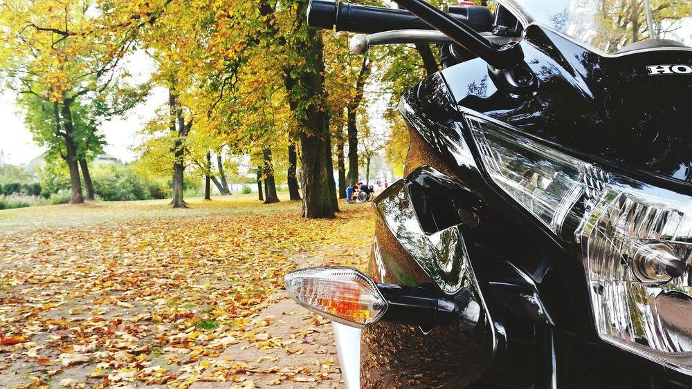Honda Cbr 250r Motocykle Moto Poland Polska Hjc