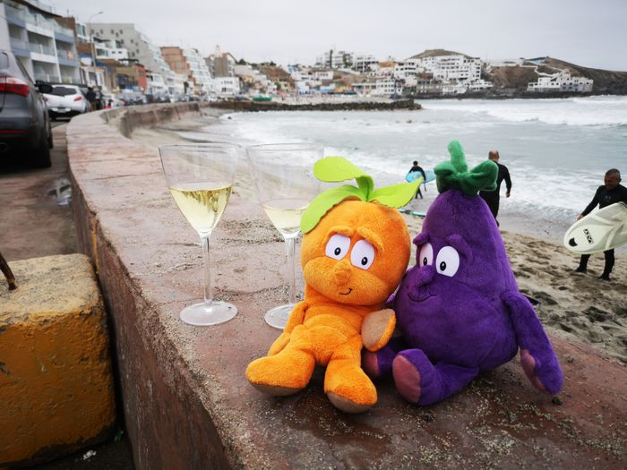 romance White Wine, Good Time Love ♥ In Love ❤ Peace Reminders Of The Beach Sea Stuffed Toy Sand