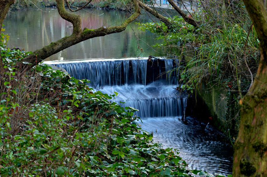 Water Nature Tree No People Waterfall Freshness Hydroelectric Power Watermill Outdoors Day Long Exposure Park EyeEmNewHere
