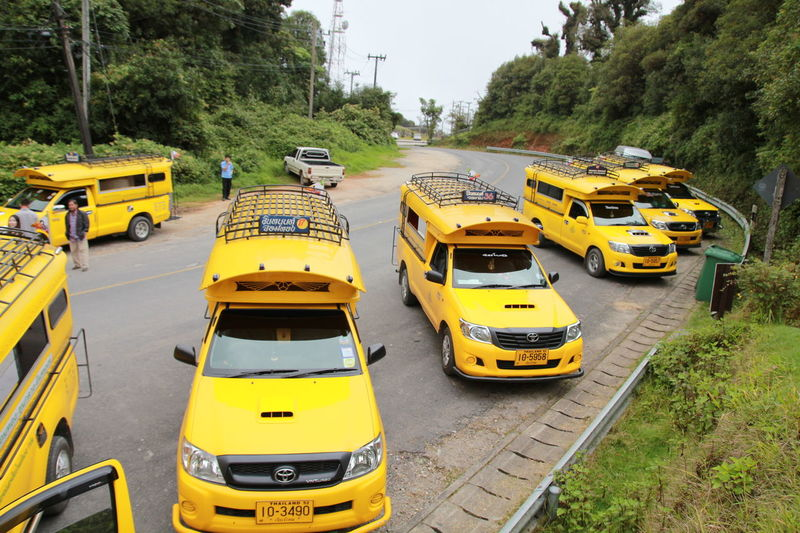 Minibus at Doi inthanon national park, Chiang Mai | Thailand Doi Inthanon Doi Inthanon National Park Transportation Bus Bus Thailand Car City Day High Angle View Land Vehicle Minibus Mode Of Transportation Motor Vehicle Nature Outdoors Plant Public Transportation Road School Bus Street Transportation Tree Yellow Yellow Bus