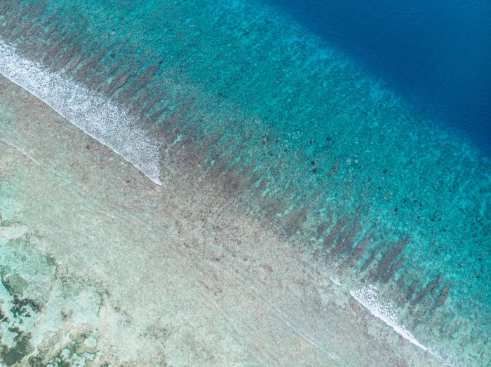The blue water and waves from the ocean, seen from above, from the Maldives Drone  Droneshot Aerial View Island Tropical Maldives Blue Water Beach Waves Crashing From Above  Palm Tree Palm Trees Paradise Blue Green Bikini No People Waves, Ocean, Nature Islands Unspoiled Nature Nature Landscape Landscapes Paradise Beach Perfection