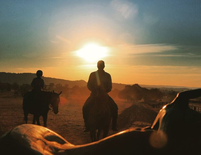 Evening ride! Australia Sunset_collection Mansfieldmtbuller Horses Nenaghpastoral Beautiful Light
