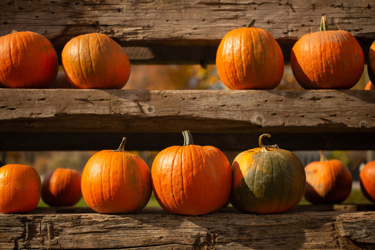 Close-up of pumpkins on wooden table