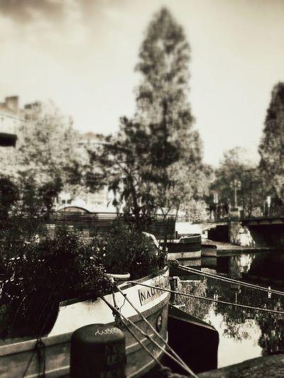 Monochrome Fresh Air Streetphotography Photography