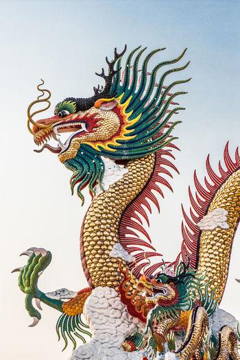 Big dragon with