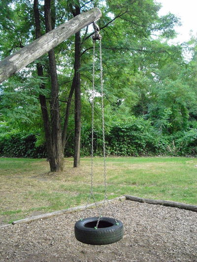 Beauty In Nature Children Playground Day Field Foliage Forest Grass Green Color Growth Hanging Land Lush Foliage Nature No People Outdoors Park Plant Rope Swing Swinging In A Tree Tranquil Scene Tranquility Tree Tyre Swing