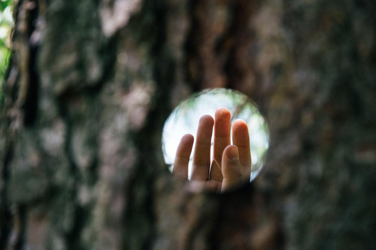 Close-Up,  Crystal Ball,  Day,  Holding,  Horizontal Image