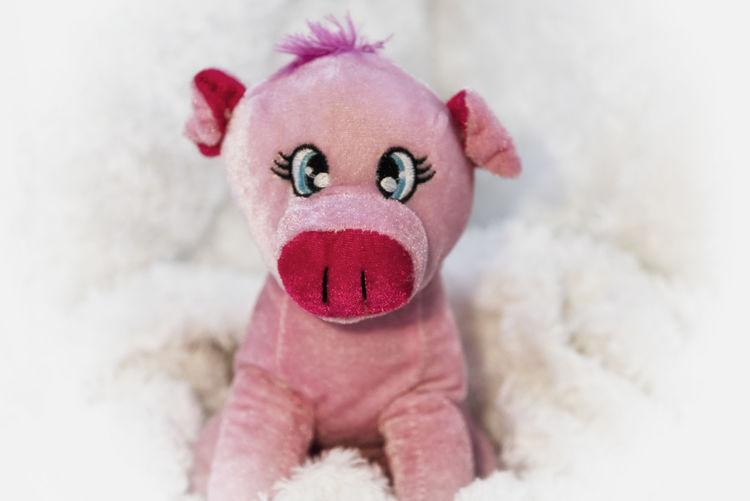 Sparkling pink ping Childhood Childhood Memories Close-up Indoors  Lieblingsteil Little Pig No People Pig Piggy Pink Pink Color Softness Sparkling Stuffed Stuffed Animals Stuffed Toy Toy Toy Photography Toyphotography Lieblingsteil