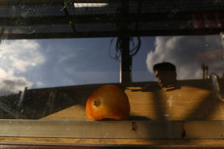 Close-up of fruits on table against the sky