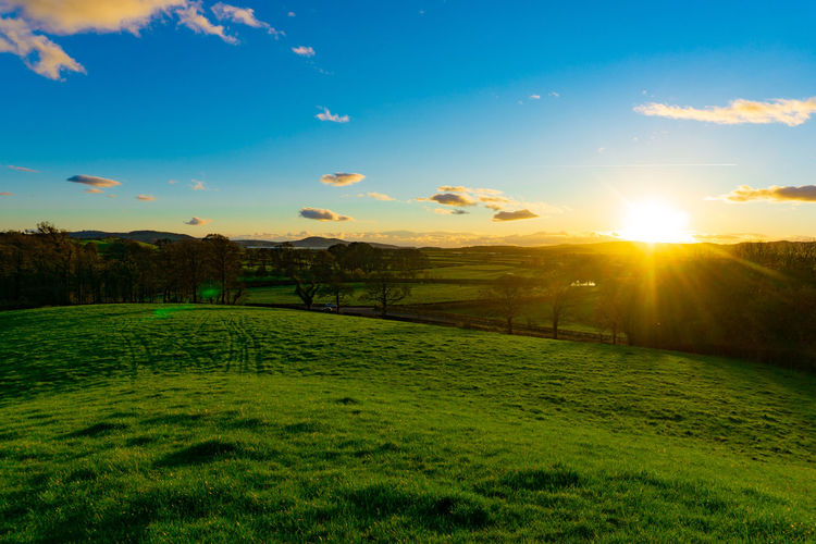 Nature landscape of green field in rural area in sunset with blue sky and clouds Sky Grass Tranquil Scene Scenics - Nature Tranquility Plant Green Color Landscape Environment Beauty In Nature Sun Sunset Sunlight Cloud - Sky Land Nature Field No People Idyllic Lens Flare Outdoors