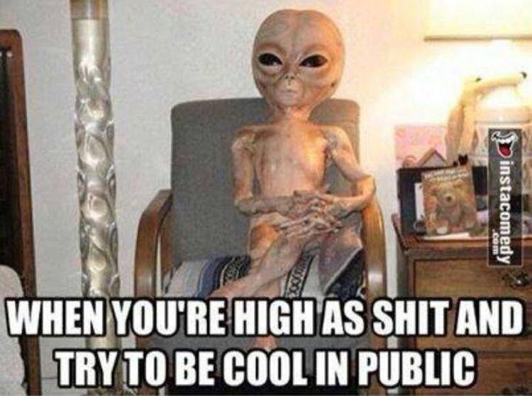 Awkard Weed High Public