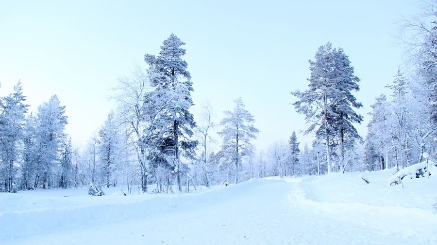 Winter Beautiful Frozen Finland Saariselkå Getting Inspired Photography Snow Beautiful Nature Sky Frozen Nature