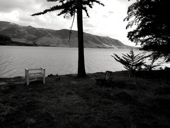 akaroa Camp Ground Morning Blackandwhite Beauty In Nature New Zealand Just For Fun