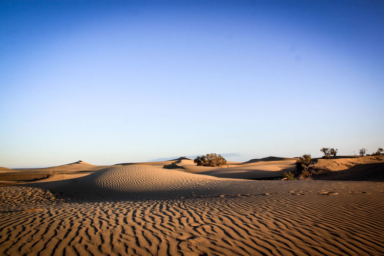 View Of Sand Dunes In Desert Against Clear Blue Sky