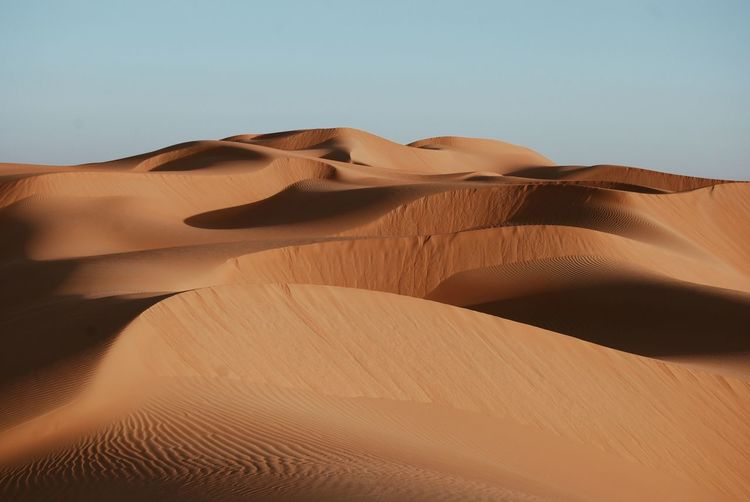 EyeEmNewHere Sand Dune Sand Desert Arid Climate Landscape Nature Clear Sky Outdoors No People Tranquility