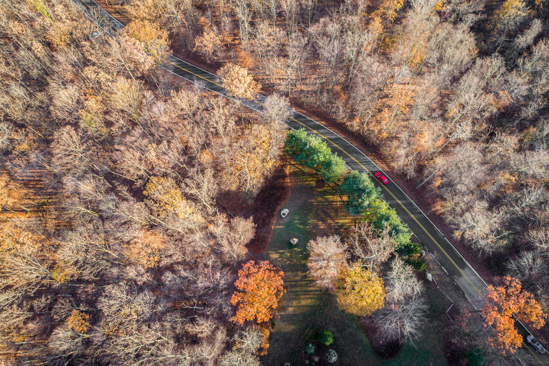 Drone  Aerial View Autumn Beauty In Nature Change Day Drone Photography Dronephotography Droneshot High Angle View Landscape Leaf Mountain Nature No People Outdoors Road Scenics Tranquil Scene Tranquility Travel Destinations Tree Water Winding Road