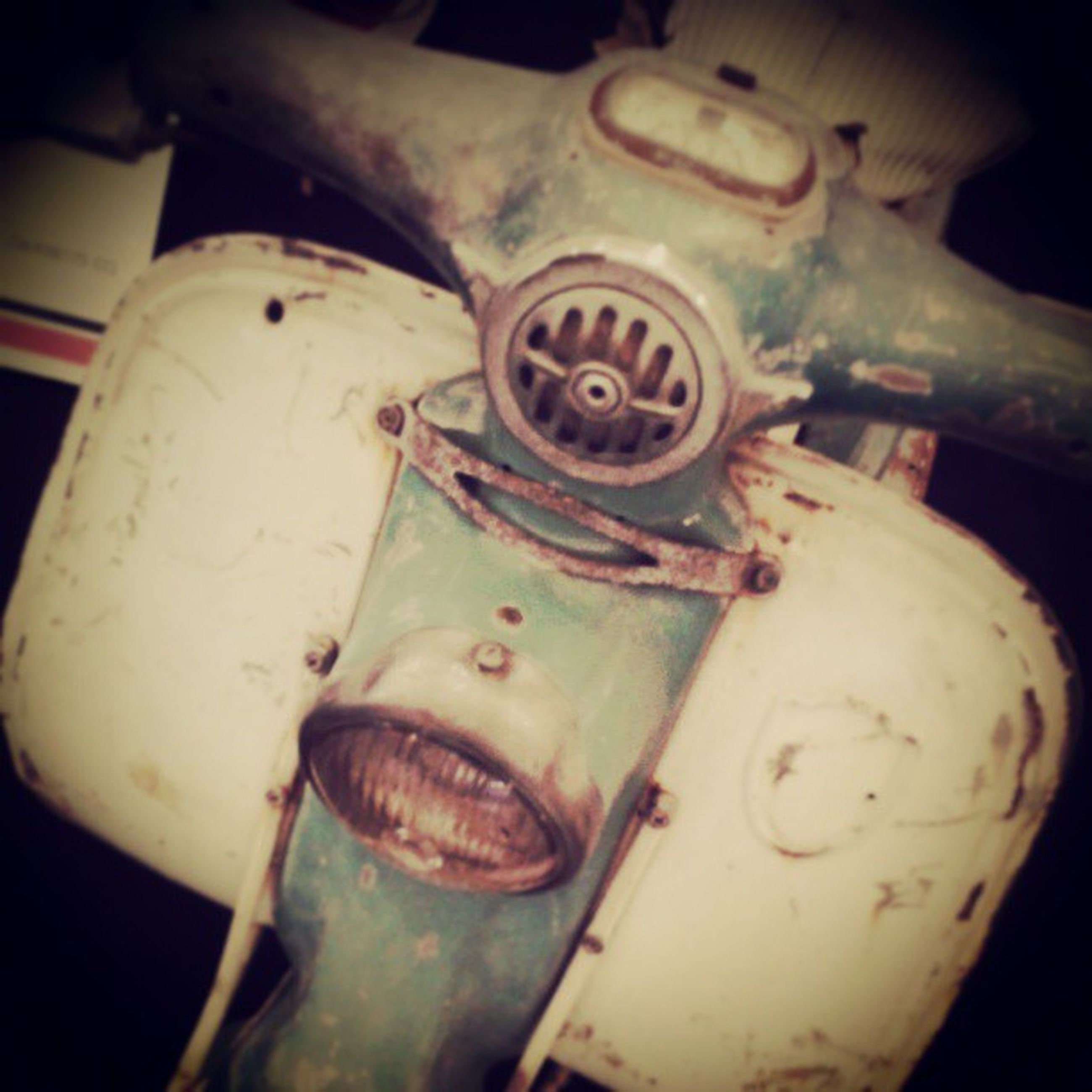 close-up, abandoned, obsolete, mode of transport, indoors, transportation, damaged, old, no people, metal, animal themes, deterioration, car, high angle view, rusty, focus on foreground, day, land vehicle, run-down