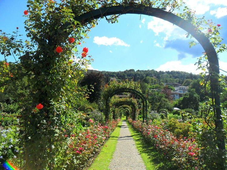 Villapallavicino Garden Photography Beautiful Bellissimo Giardino Fiorito