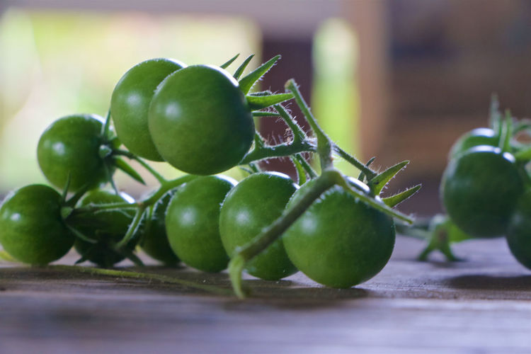 Close-up of unripe cherry tomatoes on table