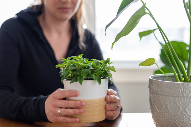 Midsection of woman with ice cream in potted plant