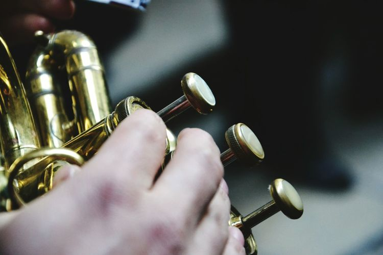 Cropped Image Of Musician Playing French Horn