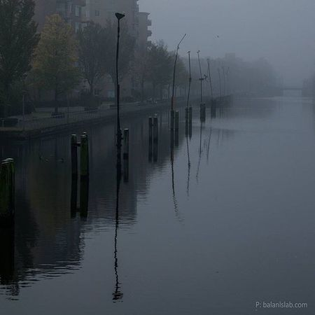 Fog Amsterdam Ig_amsterdam Fog Light Canal Amsterdamcanals Winter November BalansLaB Nature Landscape Love_nature Water Mist_bestshots