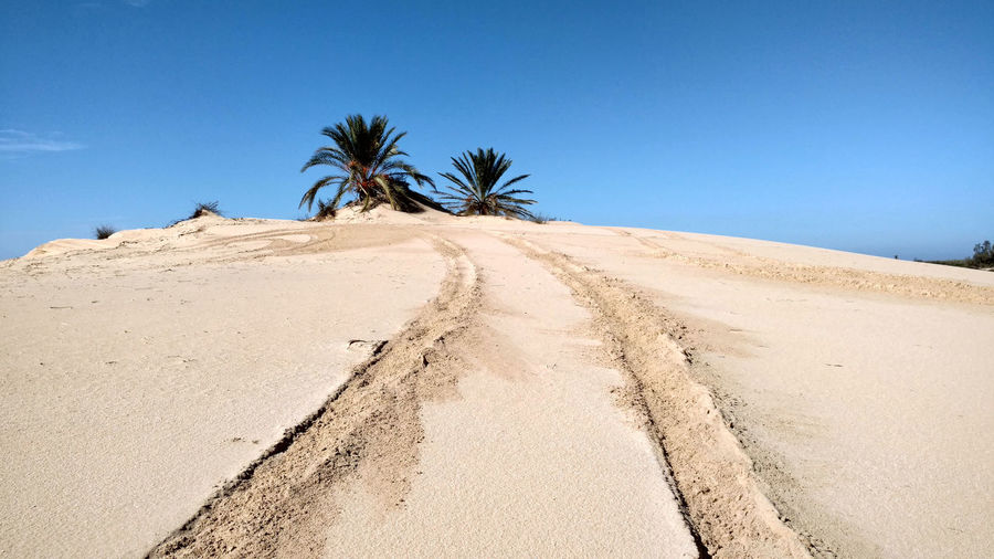 Blue sky. Sand