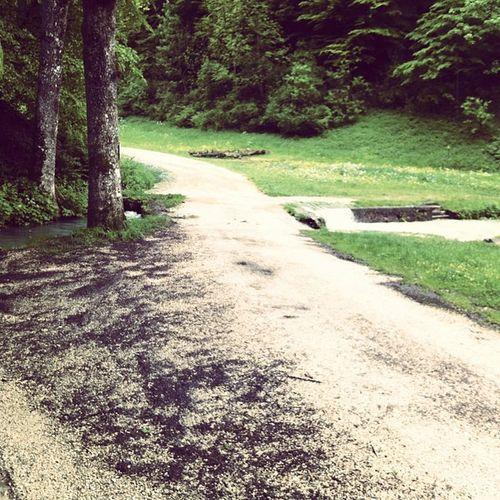 Radweg unter Hochwasser