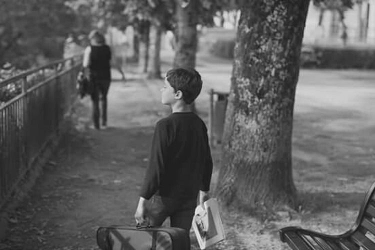 Boy Violin Violinist Black And White Walking Happy Smiling Park Tree Bench