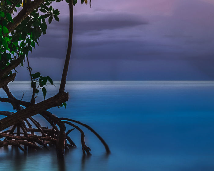 """""""Nice place to hide from the rain """" ________""""☔______ Sea Water Beach Business Finance And Industry Nature Tree Sky Blue Arts Culture And Entertainment No People Tranquility Beauty In Nature Horizon Over Water Sunset Outdoors Day City Long Exposure 100 Days Of Summer EyeEm Selects EyeEmNewHere The Great Outdoors - 2017 EyeEm Awards Blue Sky Colors Skyscapes Breathing Space The Week On EyeEm"""