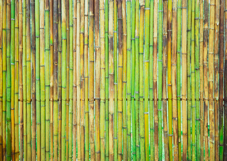 Backdrop Background Bamboo Carpenter Construction Fence Fresh Grain Green Hardwood House Interior Material Natural New Pallet Panel Pattern Plank Row Siding Stack Striped Structure Surface Texture Vertical Wall Wallpaper Wood Woodwork
