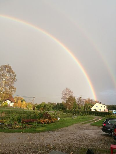 Rainbow Double Rainbow Storm Day Tree Outdoors Nature No People Beauty In Nature Weather