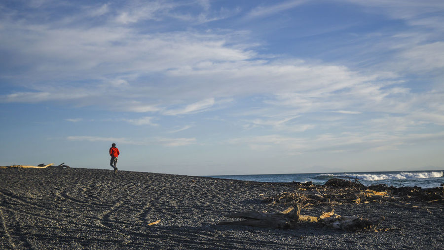 Rear View Of Person Walking On Sea Shore Against Sky