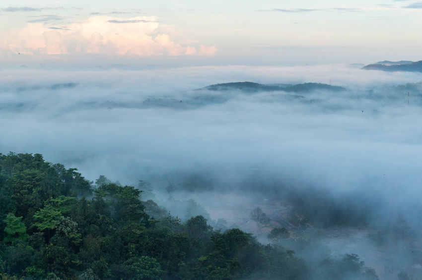 Broga Cloudscape Beauty In Nature Cloud - Sky Fog High Angle View Malaysia Scenery Morning View Outdoors Scenics - Nature Tranquil Scene Tranquility