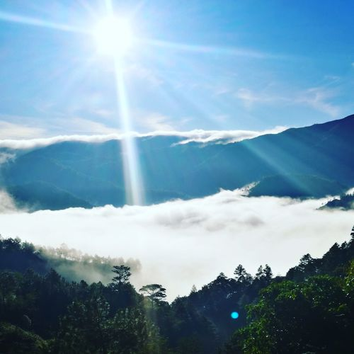 Sea of Clouds ⛅⛅⛅ Tree Mountain Forest Sunlight Blue Outdoor Pursuit Mountain Peak Nature Reserve Majestic Rays