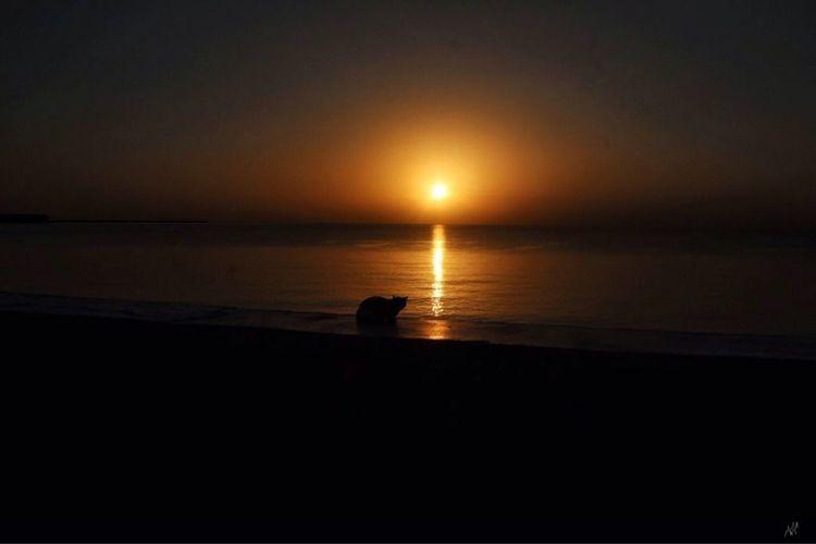 Sunrise Panama