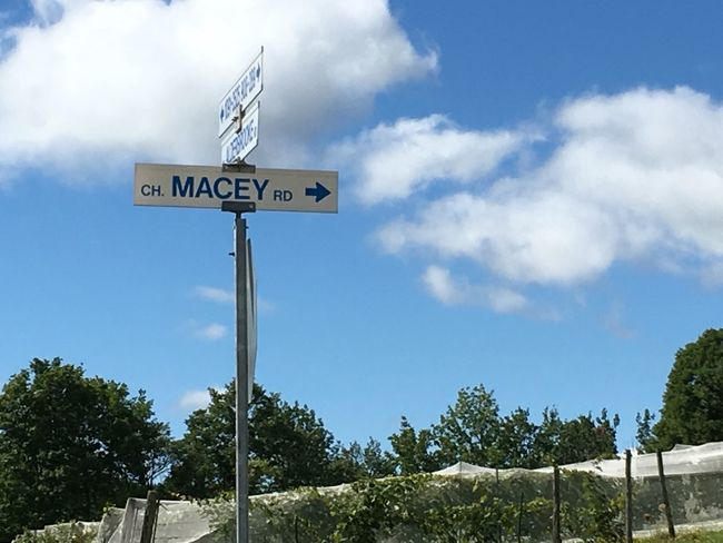 Canada Text Low Angle View Blue Pole Sky Road Sign Western Script Communication Guidance Information Sign Day Outdoors Cloud - Sky French Macey