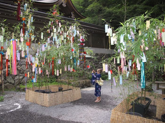 Tanibata Kimono Japan Temple Live For The Story Live For The Story