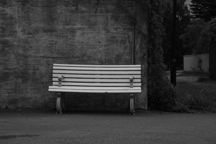 Absence Bench Black And White Blackandwhite Photography Day Empty Growth Nature No People Outdoors Seat Tranquility The Great Outdoors - 2016 EyeEm Awards