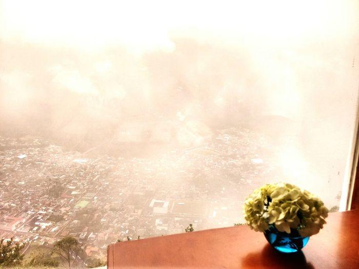Good Choices AllYouNeedIsEcuador Love❤ Greatmoments