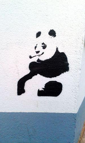 Streetart Panda @TahleKing Wieso Rauchen Alle Deine Lieblingstiere?