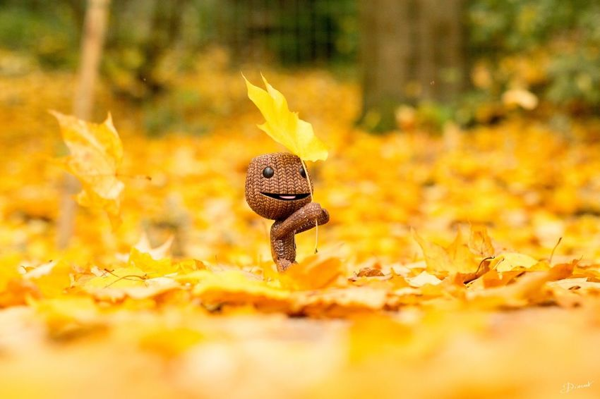 Sackboy Little Big Planet Autumn Automne Automne🍁🍂🍃