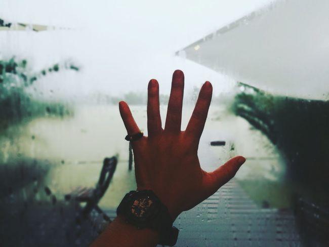 Human Hand Water Palm Human Finger Close-up